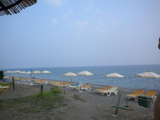 Area Blue Beach Hotel : The beach