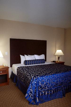 Commonwealth Park Suites Hotel: Very comfortable king bed.