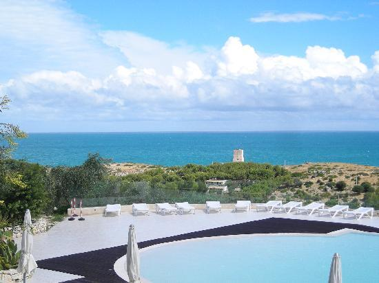 Molinella, Italy: vista mare dalla piscina