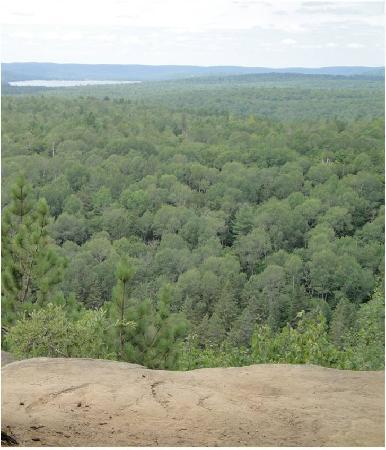 Pog Lake Campground: View from Lookout Trail