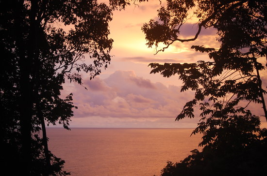Osa Peninsula, Costa Rica : View from La Guinda