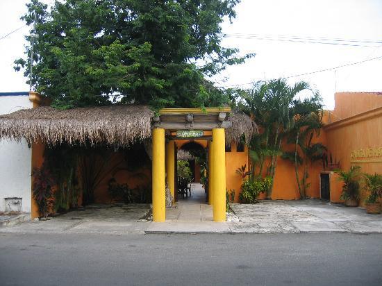 Casita de Maya: Frontside