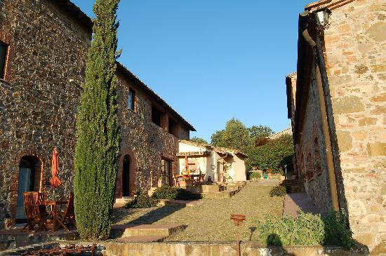 Podere Il Tigliolo: arrival at Tigliolo