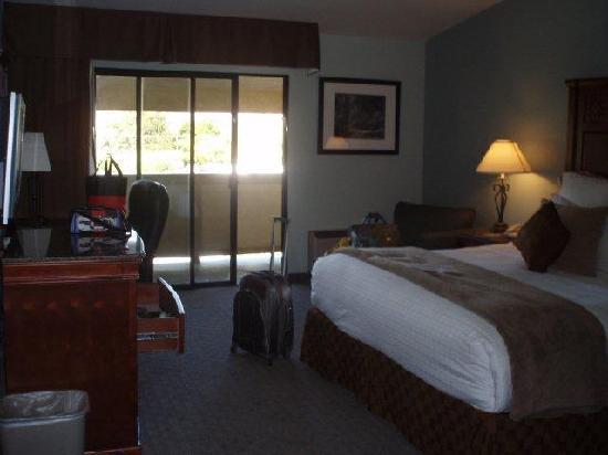 BEST WESTERN PLUS Forest Park Inn: Room 306