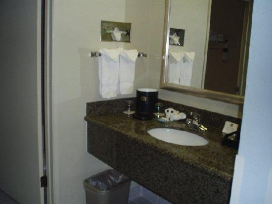 BEST WESTERN PLUS Forest Park Inn: Bathroom