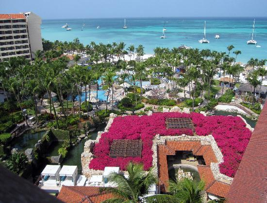 Hyatt Regency Aruba Resort And Casino Overview Of The Grounds Pool