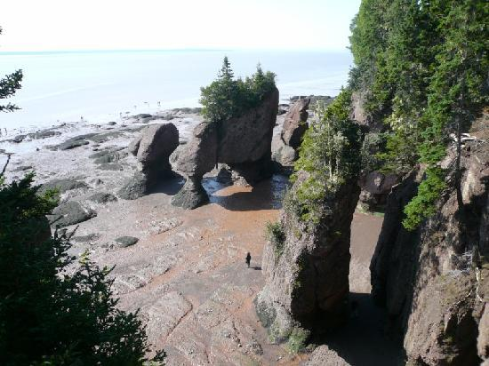 Moncton, Canada: Hopewell Rocks at Low Tide