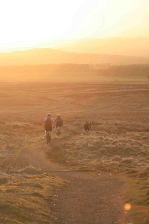 Happy Trails Mountain Biking: Quick Fix Trail Pentland Hills Edinburgh
