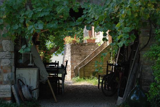 Casal Lorgnano: Una vista interna