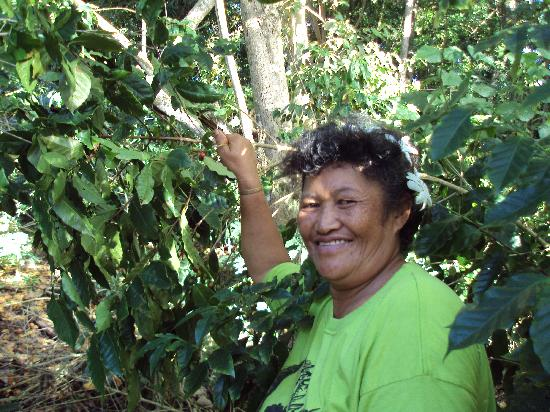 Mata Arai's Atiu Island Coffee tour: Mata Arai in her coffee plantation