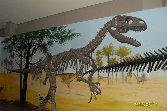Australian Capital Territory, أستراليا: Dinosaur