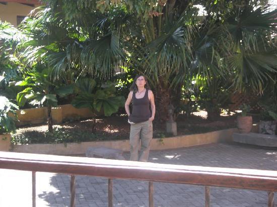 Сан-Антонио-де-Белен, Коста-Рика: jardines del hotel riviera