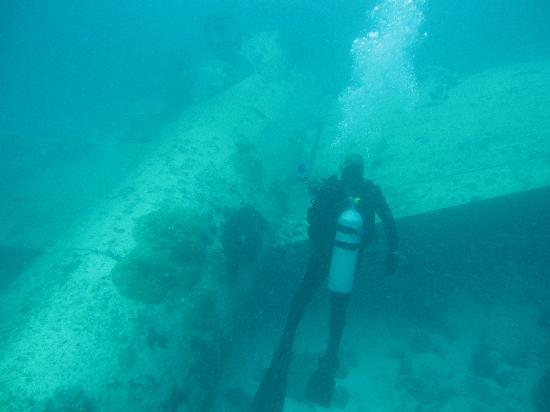 Shallow dive with WWII bomber - Courtesy of media-cdn.tripadvisor.com
