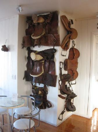 B & B Caballo Bayo: Family saddles of owner