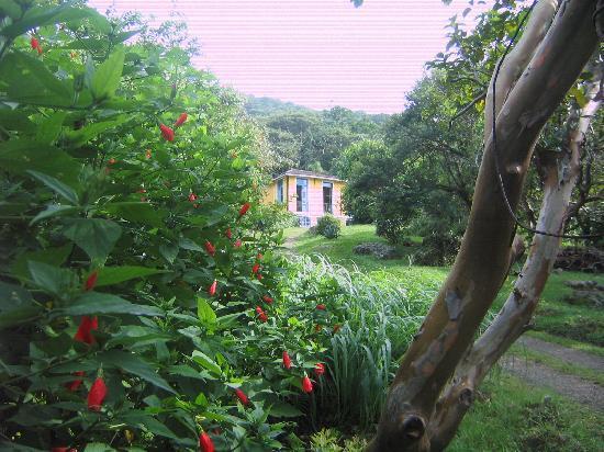Pousada Sitio Dos Tucanos : Main house