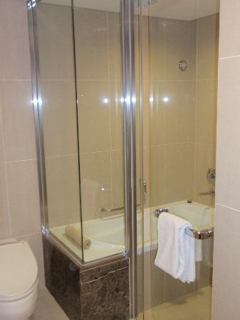 Lotte City Hotel Mapo: Bathroom