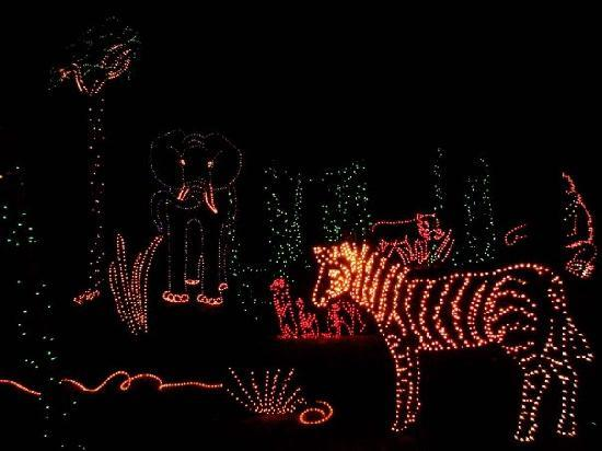 Annmarie Garden: Christmas decoration - there are many things to see during hte Illumination Celebration