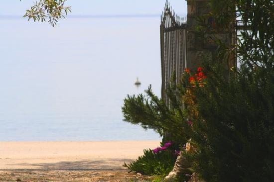 Platanofylla Studios & Apartments: Our beach