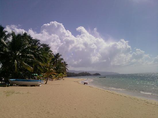 Hotel La Tortuga: Playa Colibri, Las Terrenas