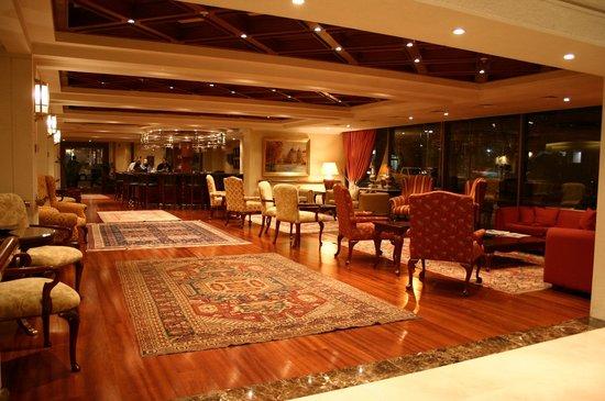 Hotel Plaza El Bosque Ebro: LOBBY