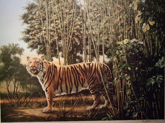 Camera Obscura und Welt der Illusionen: can you find the hidden tiger