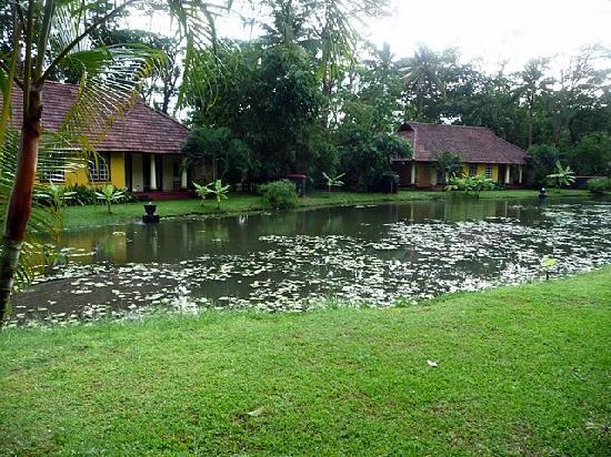 Vivanta by Taj - Kumarakom : Petit lac privé
