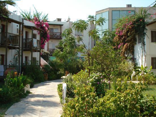 Parkim Ayaz Hotel : les jardins