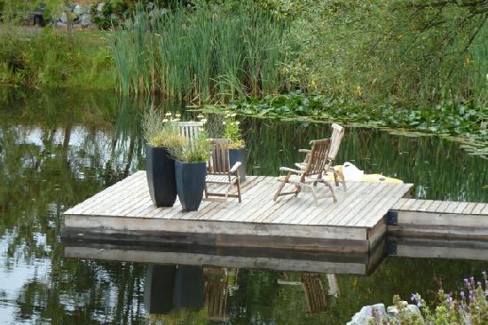 Ambraden Pond: Peer