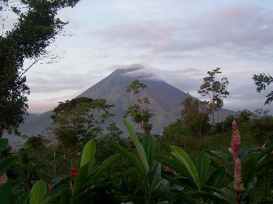 写真Leaves and Lizards Arenal Volcano Cabin Retreat枚