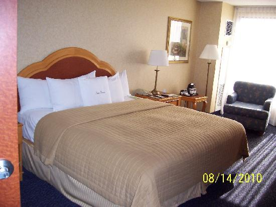 DoubleTree by Hilton Hotel Santa Ana - Orange County Airport: King Bedroom
