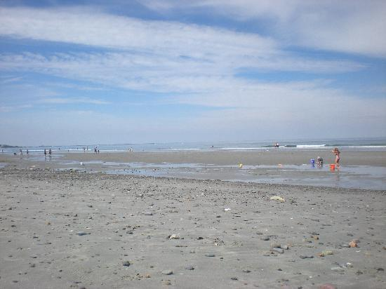 Nantasket Hotel at the Beach: View of Nantasket Beach, only a few minutes walk from Nantasket Hotel