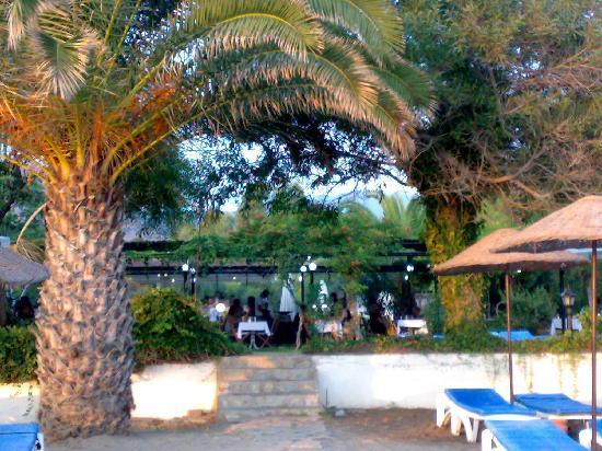 Ozdere, Turkey: giardinetto e zona pranzo
