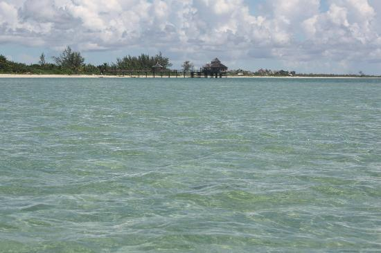 Kamalame Cay: walked out in the water - not even waist deep here NO FISH to be seen!!