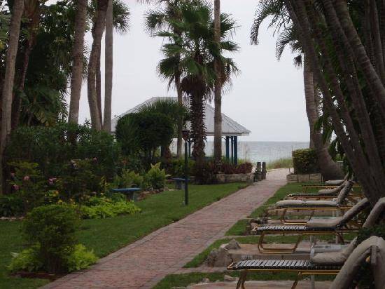 Sandpiper Inn: view to the beach