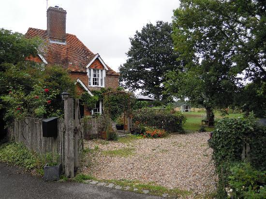Snap Mill Bed & Breakfast: Snap Mill garden