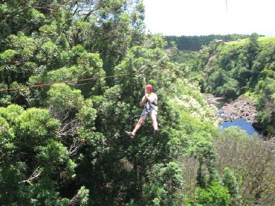 Pahoa, Hawái: Zipline