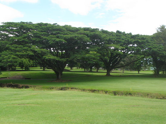 Hilo Municipal Golf Course
