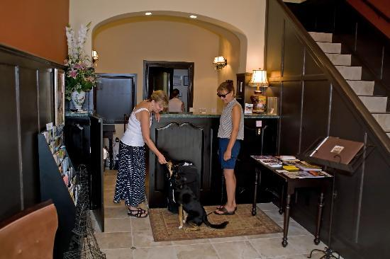 Camas Hotel: Pet-Friendly!