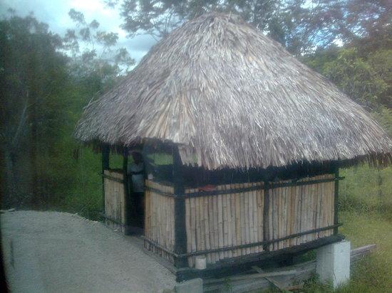 Entrada a la Cascada Misol Ha. Selva Lacandona. Chiapas. México