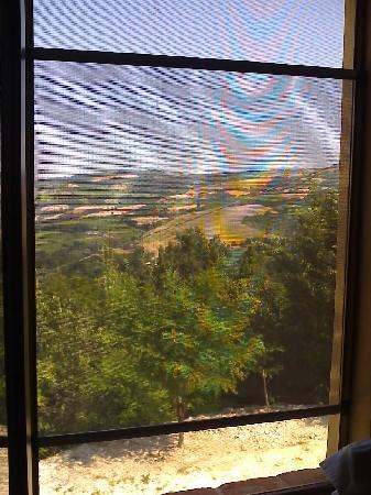 Country House Ca' Vernaccia: View from bedroom window, with screen.