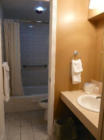 Red Roof Inn & Suites Herkimer : The bathroom