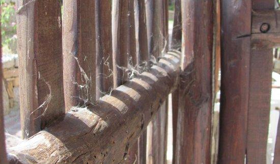 Orovacanze Resort Capo d'Orso: ragnatele