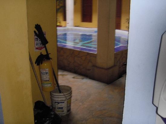 La Brisa Loca Hostel: Poool!!