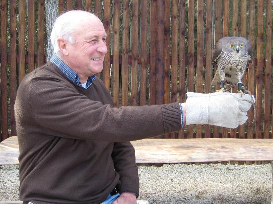 Radical Raptors: Neville and Owl