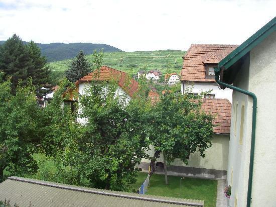 Hotel Garni Donauhof: 窓からブドウ畑が見える