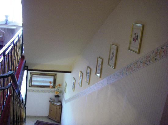 Hotel Garni Donauhof: 階段