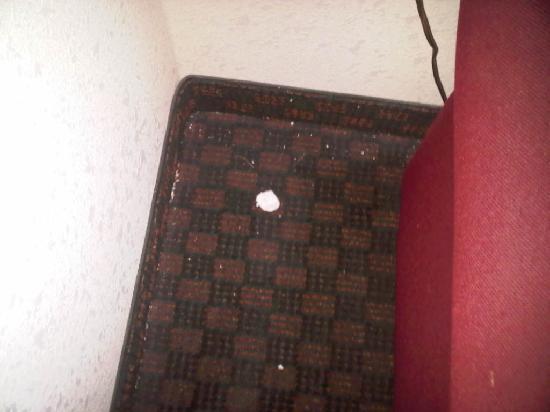 Red Roof Inn Lancaster: Dirty Carpet