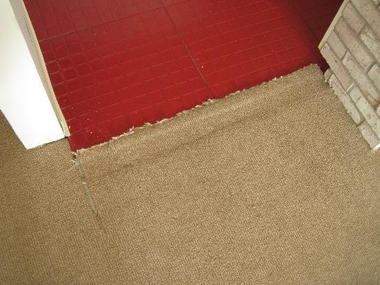 The Bentley: carpet wear and tear sample, also the red tiles need to be replaced