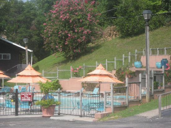Carr's Northside Cottages & Motel: Pool area