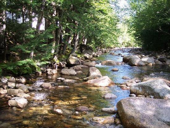 Franconia Notch Motel: The river out back of the motel